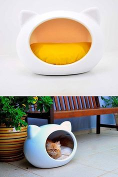 Comfortable Cat House
