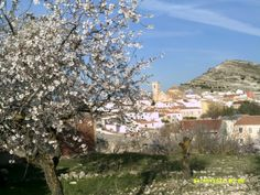 Alatoz Castilla La Mancha spain