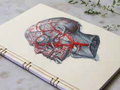 Anatomy Journal. Embroidered A5 Notebook. Blood Circulation of the Head Book. Medicine Art. Science Art Journal. Anatomical Book. Stitch Art