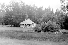 """Photograph of """"Rat Hall"""", house rented by Emily Carr in 1939 sketching trip. Emily Carr, Record Collection, San Francisco, June, Cottage, House Styles, Outdoor, Outdoors, Cabin"""