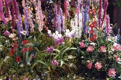 Monet's garden in miniature