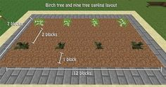 How to Build a Tree Farm in Minecraft for Easy Access to All Types of Wood - I recommend building your roof BEFORE planting. I was silly enough to make that mistake and could not control my trees.<<< trees grow through the roof for me Minecraft Farmen, Amazing Minecraft, Minecraft Construction, Minecraft Tutorial, Minecraft Blueprints, How To Play Minecraft, Minecraft Crafts, Minecraft Banners, Minecraft Bedroom