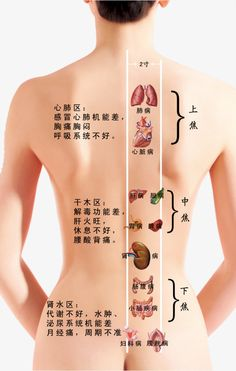 Accupuncture, Acupressure Treatment, Medical Anatomy, Massage Techniques, Traditional Chinese Medicine, Body Treatments, Massage Therapy, Face And Body, Body Care