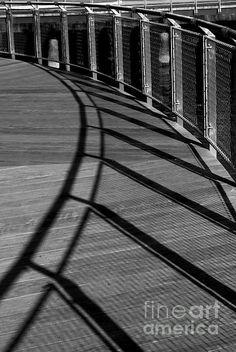 Nautilus Form - photograph by James Aiken james-aiken.artistwebsites.com #jamesaiken #abstractphotography #lightandshadowphotography