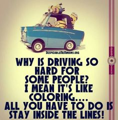 Why is driving so hard for some people? I'm mea, it's like coloring. All you have to do is stay inside the lines.