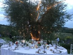 Wedding and Event planner in Toscana e Umbria - Mariella Santoni Tuscany, Wedding Planner, Wedding Planer, Wedding Planners, Tuscany Italy
