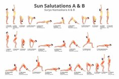 Amazon.com: 24x36 Yoga Vinyasa Poster Educational Wall Art Sun Salutes A & B: Posters & Prints