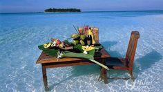 sandbank-dining    Angsana Ihuru Resorts & Spa by Alpha Maldives - Maldives Luxury Resorts  https://www.alphamaldives.com/resort/angsana-ihuru-resort_19_home_0.html