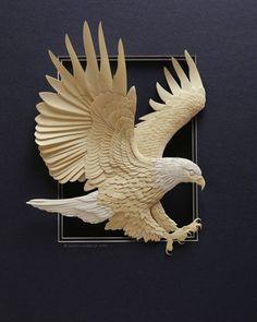 Follett Library Resources - Hummingbird by calvin nicholls, via Behance