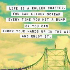 I love roller coasters! I have so much fun on them that I am filled with smiles and laughter! I guess that's my intake on life.