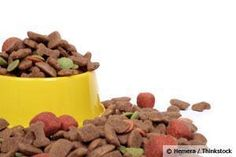 Aflatoxins, found in some dog food, can cause acute lethal illness and cancer in animals and humans. http://healthypets.mercola.com/sites/healthypets/archive/2013/04/03/aflatoxin-contaminated-dog-food.aspx