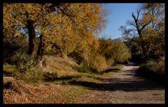 Rambla near Lijar, Almeria, Spain