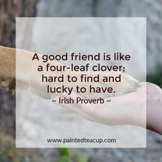 Here are some beautiful quotes to help you honor your friends and let them know . Here are some beautiful quotes to help you honor your friends and let them know how special they ar Mental Illness Quotes, Mental Health Quotes, Friends Are Like, Real Friends, Some Beautiful Quotes, Irish Proverbs, Scrapbook Quotes, Girl Quotes, Girl Friendship Quotes