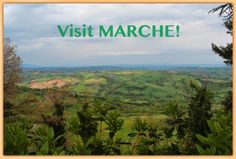A Couple of Reasons to Visit MARCHE