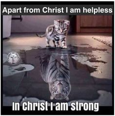 In Christ we see our weaknesses and in Christ we see Him as our strength.