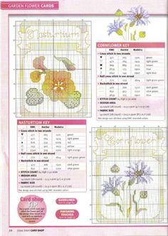 Gallery.ru / Фото #18 - Cross Stitch Card Shop 37 - WhiteAngel