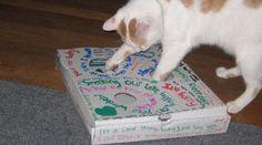 Ce jouet à fabriquer soi-même est tout simple.  Il suffit de faire des trous sur une boite à pizza et de mettre une balle de ping-pong dedans.  Découvrez l'astuce ici : http://www.comment-economiser.fr/jouet-pour-chat-pas-cher-gratuit.html?utm_content=buffere3365&utm_medium=social&utm_source=pinterest.com&utm_campaign=buffer