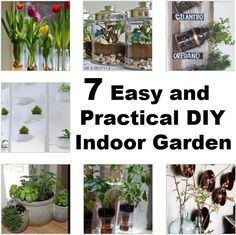 DIY indoor gardens. We have plenty of options to help you get your indoor garden started at http://www.gardensupplyguys.com/