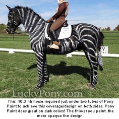 Awesome horse Halloween costume!
