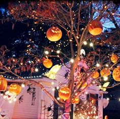 Getting into the Halloween Spirit!