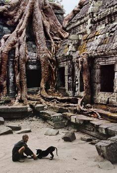 Caretaker at the Ta Prohm temple, Angkor, Cambodia, 1999-« Finalement, je n'ai jamais été si passionné que ça par la couleur. J'aime les couleurs parce que le monde est en couleur. »Steve McCurry