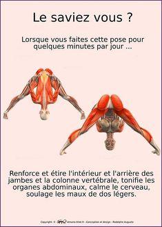 Ashtanga Vinyasa Yoga, Iyengar Yoga, Fitness Del Yoga, Yoga Muscles, Yoga Poses For Two, Relaxing Yoga, Yoga Positions, Yoga Gym, Qigong