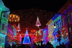 Walt Disney World Christmas   Christmas at Walt Disney World   Shutterthyme's Blog