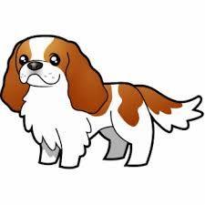 Afbeeldingsresultaat voor cartoon cavalier king charles spaniel