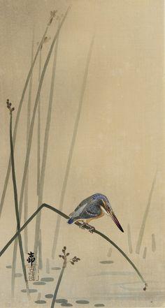 Kingfisher - Ohara Koson (1877-1945)                                                                                                                                                                                 More
