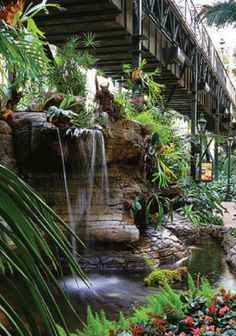 Check out the Opryland Hotel in Nashville and their amazing garden.