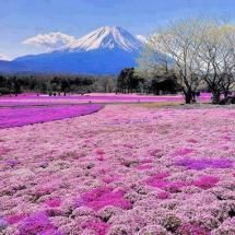 Different view - Mount Fuji
