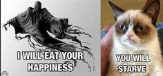 I <3 Grumpy Cat!