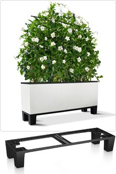 Lechuza Trio Cottage Trough Planter Pedestal | Free Shipping