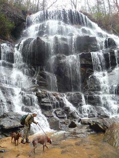 Yellow Branch Falls in Oconee State Park - Walhalla, SC.