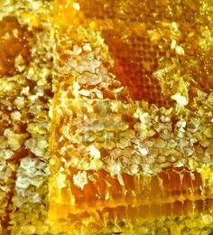 Ορεινή Μέλισσα: Διάφραγμα Σνέλκροφ. Για δυνατά μελίσσια και πολλά μέλια!