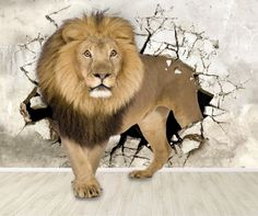 Fototapeta Drapieżnik przy ścianie 3d Wallpaper Texture, Textured Wallpaper, Lion Images, Home Wallpaper, Animals, Bathroom, Wall Papers, Vinyls, Murals