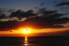 Californian sunset in Redondo Beach Travel Around The World, Around The Worlds, How To Plan, Sunset, Country, Beach, Happy, Outdoor, Pura Vida