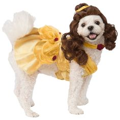 Get your dog ready for Halloween with our costumes! Party City carries dozens of pet costumes for Halloween, Christmas or other fun holidays. Disney Halloween, Halloween Outfits, Pet Halloween Costumes, Pet Costumes, Halloween Kostüm, Costume Ideas, Funny Costumes, Halloween Items, Disney Belle
