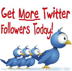 Ascenteq Info Solution Reviews | New York, USA: 10 Ways to Grow a more followers on Twitter