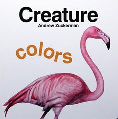 Creature: Colors! Learn the rainbow with red snakes, orange fish, and yellow birds. Learn to count as two scorpions fight, four penguins waddle, and nine ants work. Andrew Zuckerman's vivid pictures of fascinating animals from around the world will enthrall #youngreaders and teach basic colors and numbers in a celebration of nature in two #books that bring the wildly successful photographer's work to a whole new audience. The up-close and personal photos of everyone's favorite animals.
