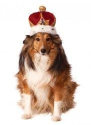 Rubies Costume Company Kings Crown Pet Costume Accessory