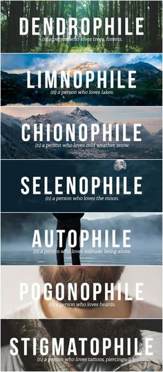I'm a Dendrophile Limnophile Chionophile Selenophile Autophile Pogonophile & Stigmatophile. Unusual Words, Weird Words, Rare Words, Unique Words, Cool Words, Beautiful Words In English, Pretty Words, English Vocabulary Words, Learn English Words