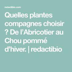 Quelles plantes compagnes choisir ? De l'Abricotier au Chou pommé d'hiver.   redactibio
