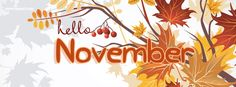 Brown Orange Fall Leaves Hello November Facebook Cover CoverLayout.com