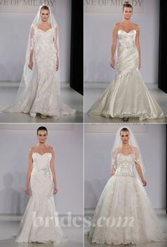 Brides.com: 2013 Wedding Dress Collections. Browse the Fall 2013 wedding dress collection by Amalia Carrara
