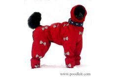 poodleit — Rain coats for dogs