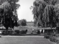 Rowheath pond and pavilion from way back when