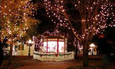 Check out Utica Square for some great food and beautiful Christmas lights!