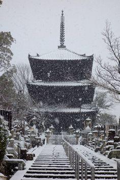 京都雪景色 金戒光明寺 三重塔 Buddhist Temple, Japanese Culture, Kyoto, Paris Skyline, Scenery, City, Travel, Beautiful, Viajes