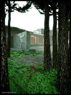 guntaryo box house